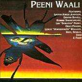 Various - Peeni Waali.  A Magic Meeting With: